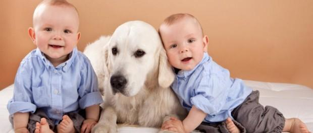dogs-for-people-with-allergies-and-kids-620x264 (1)