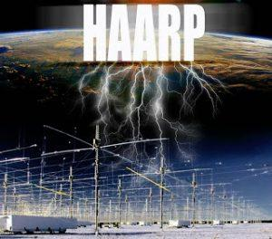 digitalornamentdesinghaarp